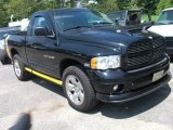 2004 Black Dodge Ram 1500 Rumble Bee Regular Cab 4x4 #31478123