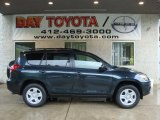 2010 Black Forest Pearl Toyota RAV4 I4 4WD #31477968