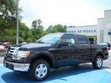 2010 Tuxedo Black Ford F150 XLT SuperCrew #31478043