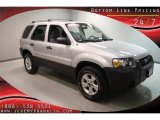 2006 Silver Metallic Ford Escape XLT V6 #31536500