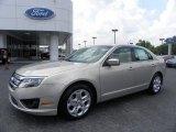 2010 Smokestone Metallic Ford Fusion SE #31712381