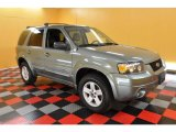 2006 Titanium Green Metallic Ford Escape Hybrid 4WD #31712577