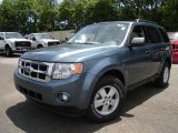 2010 Steel Blue Metallic Ford Escape XLT 4WD #31743136