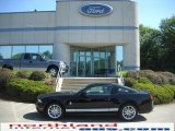 2011 Ebony Black Ford Mustang V6 Premium Coupe #31743051