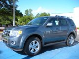 2010 Steel Blue Metallic Ford Escape Limited V6 #31791236