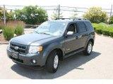 2009 Black Pearl Slate Metallic Ford Escape Hybrid 4WD #31791097