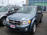 2010 Steel Blue Metallic Ford Escape XLT 4WD #31850953