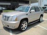 2007 Gold Mist Cadillac Escalade  #31900745