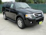 2010 Tuxedo Black Ford Expedition XLT #31964101