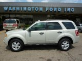 2009 White Suede Ford Escape XLT V6 4WD #31964213