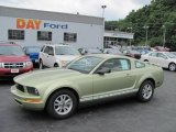 2006 Legend Lime Metallic Ford Mustang V6 Premium Coupe #32054163