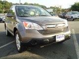 2009 Urban Titanium Metallic Honda CR-V EX-L 4WD #32054637