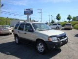 2003 Gold Ash Metallic Ford Escape XLT V6 4WD #32268664
