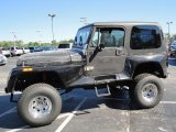 1993 Jeep Wrangler Black