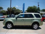 2009 Ford Escape Kiwi Green Metallic