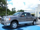 2010 Sterling Grey Metallic Ford F150 XLT SuperCrew #32466549