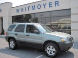 2006 Titanium Green Metallic Ford Escape XLT V6 4WD #32535270