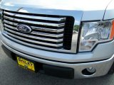 2010 Ingot Silver Metallic Ford F150 XLT SuperCrew #32534779