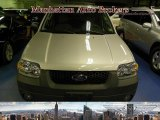 2006 Silver Metallic Ford Escape XLT V6 4WD #32604629