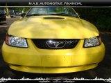 2002 Zinc Yellow Ford Mustang V6 Convertible #32604670