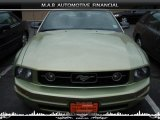 2006 Legend Lime Metallic Ford Mustang V6 Premium Coupe #32604311