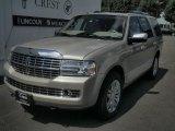 2007 Light French Silk Metallic Lincoln Navigator Ultimate 4x4 #32681689