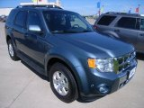 2010 Steel Blue Metallic Ford Escape Limited V6 4WD #32683073