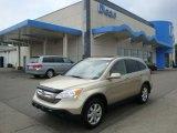 2008 Borrego Beige Metallic Honda CR-V EX-L 4WD #32683182