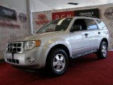 2009 Brilliant Silver Metallic Ford Escape XLT #32683241