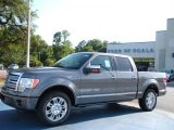 2010 Sterling Grey Metallic Ford F150 Platinum SuperCrew #32945001