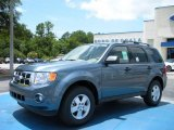 2010 Steel Blue Metallic Ford Escape XLT V6 #32945013