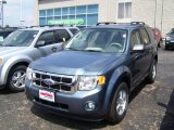 2010 Steel Blue Metallic Ford Escape XLT 4WD #32965737