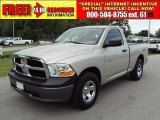 2009 Light Graystone Pearl Dodge Ram 1500 ST Regular Cab #32966555