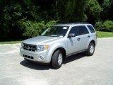 2009 Brilliant Silver Metallic Ford Escape XLT V6 #33081707