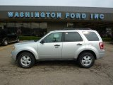 2009 Brilliant Silver Metallic Ford Escape XLT V6 4WD #33081484