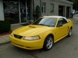 1999 Chrome Yellow Ford Mustang GT Convertible #33236610