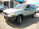 2006 Titanium Green Metallic Ford Escape XLS 4WD #33328118