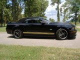 2007 Ford Mustang Black/Gold Stripe