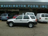 2006 Silver Metallic Ford Escape XLT V6 4WD #33439079