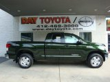 2010 Spruce Green Mica Toyota Tundra TRD Double Cab 4x4 #33438724