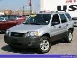 2006 Silver Metallic Ford Escape XLT V6 #33496507