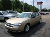 2005 Light Driftwood Metallic Chevrolet Malibu Maxx LS Wagon #33495862