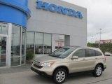 2008 Borrego Beige Metallic Honda CR-V EX-L 4WD #33538769