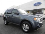 2010 Steel Blue Metallic Ford Escape XLT #33538783