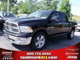 2010 Brilliant Black Crystal Pearl Dodge Ram 1500 Big Horn Crew Cab 4x4 #33548685
