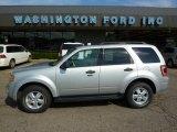 2009 Brilliant Silver Metallic Ford Escape XLT 4WD #33548925