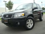2006 Black Ford Escape Limited #33673300