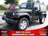 2010 Natural Green Pearl Jeep Wrangler Sport 4x4 #33673320