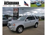 2009 Brilliant Silver Metallic Ford Escape Limited V6 #33673375