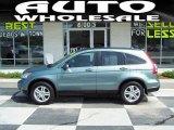 2010 Opal Sage Metallic Honda CR-V EX-L #33802747
